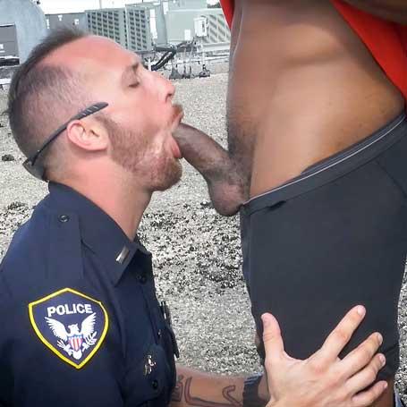 GayPatrol image 9